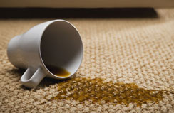 Carpet Cleaning Tips Frederick MD Maryland
